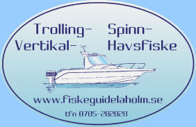 Fiskeguide i Laholm