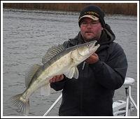 Mangesfiske, fishing guide, nice catch of zander