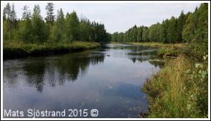 Vanån, uppströms Tennänget