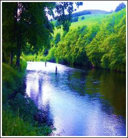 Laxfiske från River Tweed