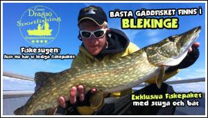 Camp Dragsö Sportfishing