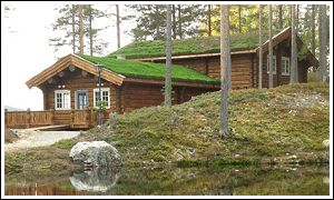 Fjällripan Lodge