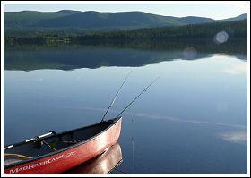 Fiska i Laisan