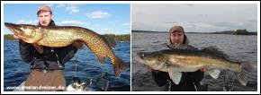 Gädda och gös på Adventure of Småland