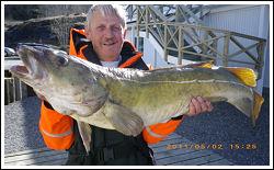 Välkommen till Widmarks Vildmarksfiske, Torskfiske Norge
